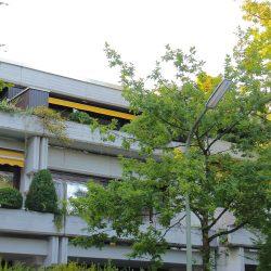 Immobilien Pesth München Wohnung Vermietung Obermenzing